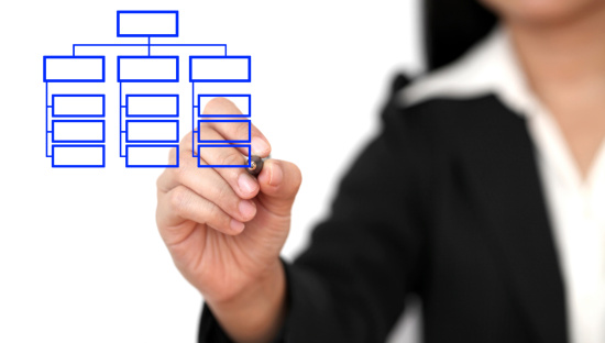 Drawing Business Organization Chart Stock Photo - Download Image Now