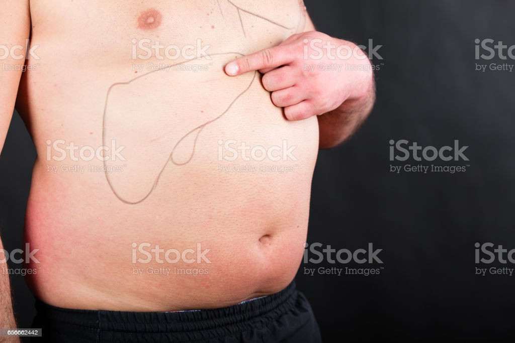 Drawing of liver and gall bladder on human body stock photo more drawing of liver and gall bladder on human body royalty free stock photo ccuart