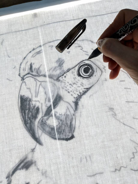 Drawing parrot with gel pen on back lit fabric. stock photo