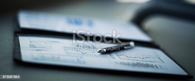 istock Drawings and charts of successful business 973087854