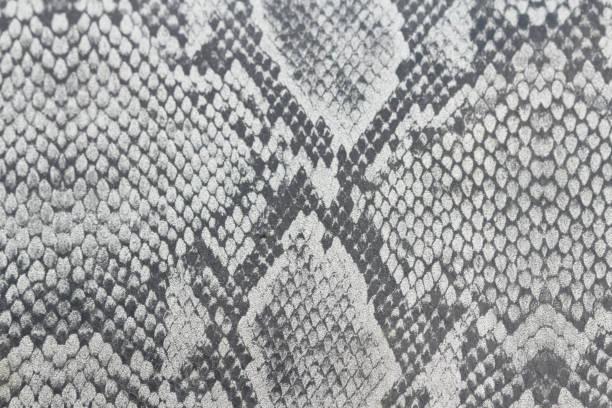 Fondo de carro hecho de piel de una serpiente o un reptil, cocodrilo y Lagarto - foto de stock