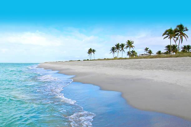 dream beach island - riva dell'acqua foto e immagini stock