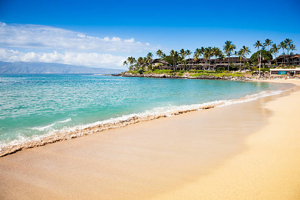 Dream beach napili bay maui hawaii picture id157560008?b=1&k=6&m=157560008&s=612x612&w=0&h=nptgsnsxn04w vqwqjyfx79t54fs0l9qjbin2c25x i=