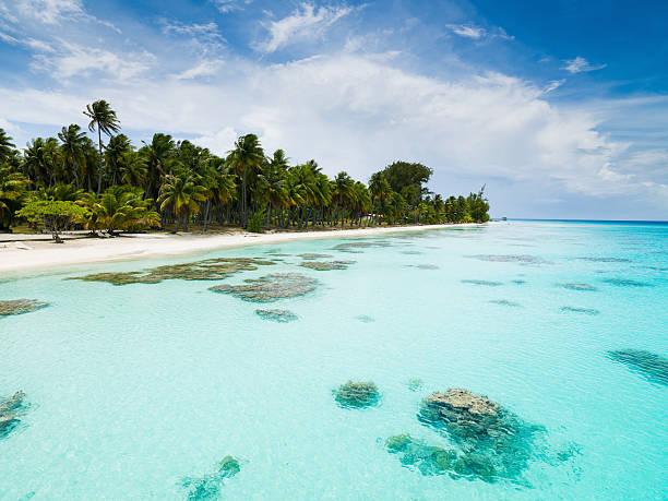 Sogno spiaggia estate vacanza Fakarava Arcipelago di Tuamotu Polinesia francese - foto stock