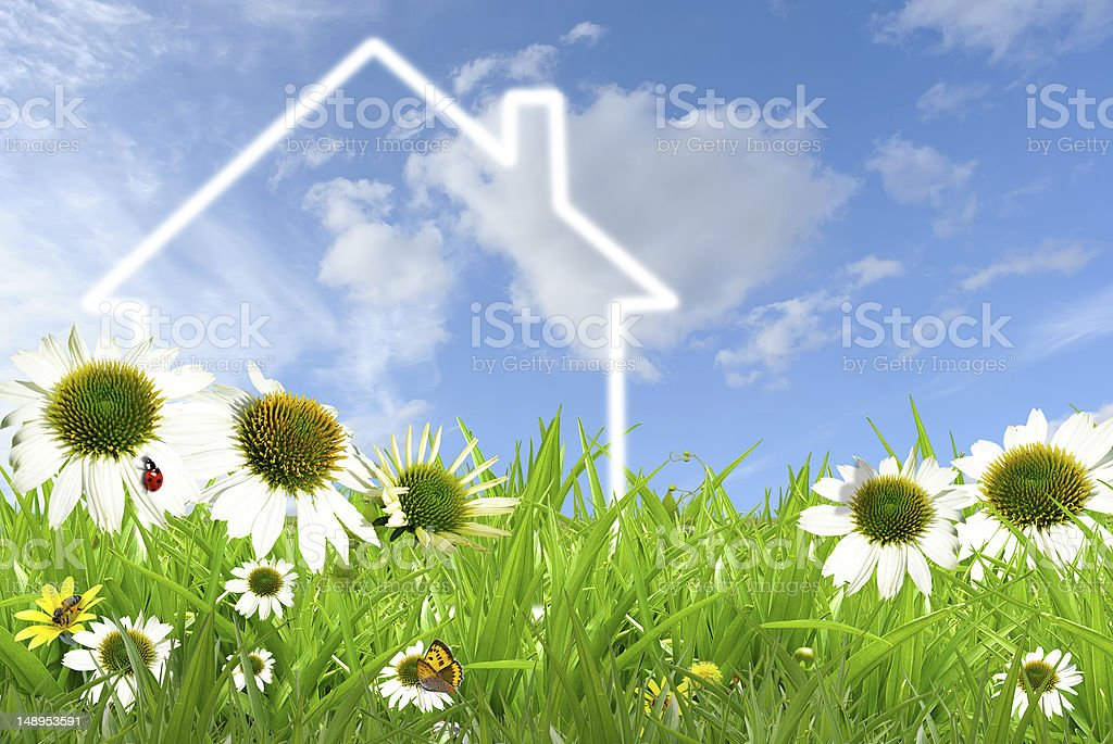Dream House Symbol of a house on grassland against blue sky Agricultural Field Stock Photo