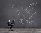 Side view of standing rooster on wooden floor with flying eagle sketched (chalk drawing) on the wall.\n\nNote: Flying eagle sketched on the wall drawing by mgkaya.