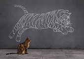 A tabby cat sitting on wooden floor and looking at the running (or jumping) tiger sketched (chalk drawing) on the wall.