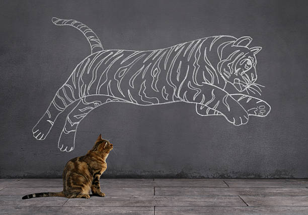 dream of tabby cat: being tiger - tiger stock photos and pictures