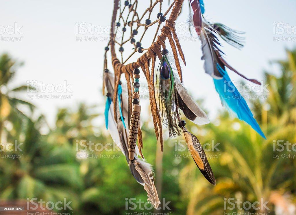 Porte-bonheur indien dans une forêt exotique. - Photo