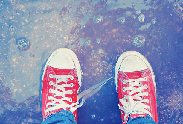 Calçados Dreamer' - foto de acervo