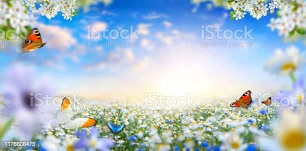 Dreamland fantasy spring landscape with flowers and butterflies picture id1176606473?b=1&k=6&m=1176606473&s=612x612&h=cg5sj3noijtp htwgko2xxzkt077usfma39c5tbxmig=