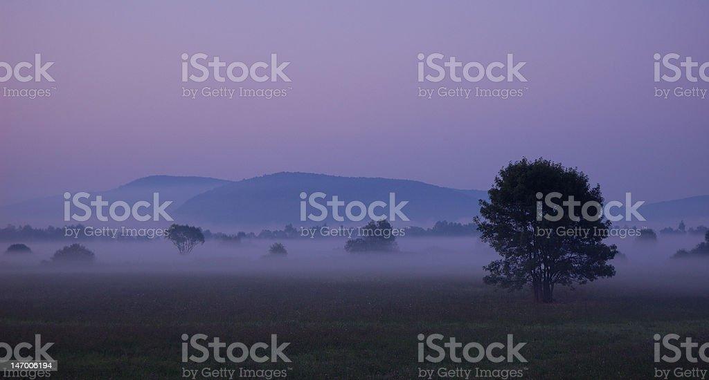 Dreamland royalty-free stock photo