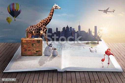 istock dreamlike travel 823225382