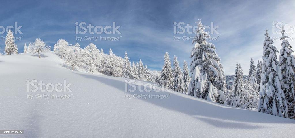 Dreamlike winter landscape stock photo