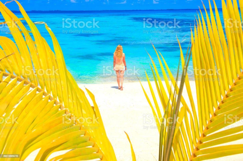Dreamscape fly med skönhet flicka på Maldiverna royaltyfri bildbanksbilder