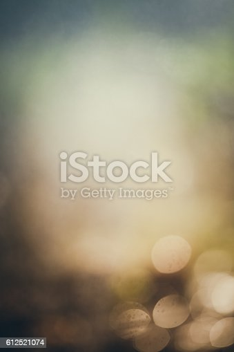 istock Dreamy Bokeh Background Autumn Or Winter 612521074