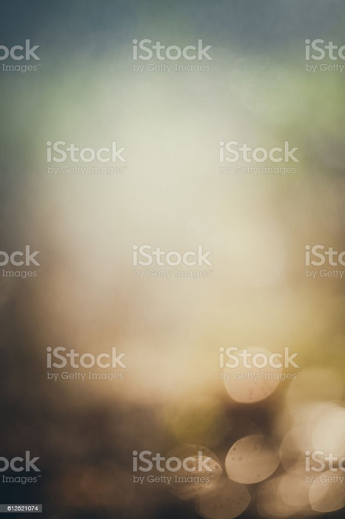 Dreamy Bokeh Background Autumn Or Winter stock photo