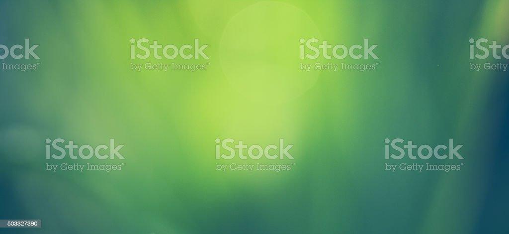 Dreamy Bokeh Natuare Background - Green & Yellow stock photo