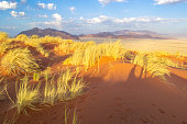 istock Dreamy dune landscape during sunset of the dunes in Sossusvlei, Namibia 1269257458