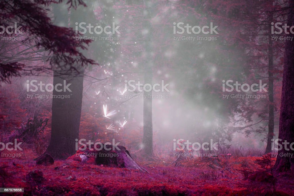 Dreamy fairytale forest scene with magic fireflies, foggy surreal forest - foto stock
