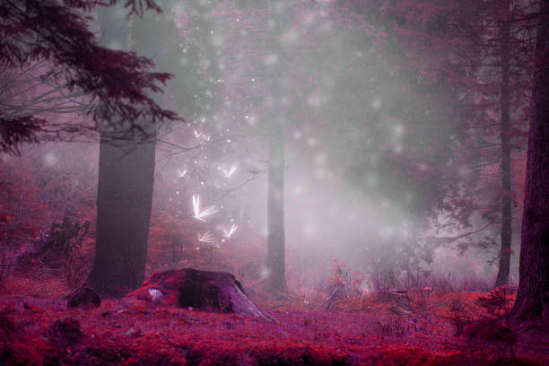 Dreamy fairytale forest scene with magic fireflies, foggy surreal forest stock photo