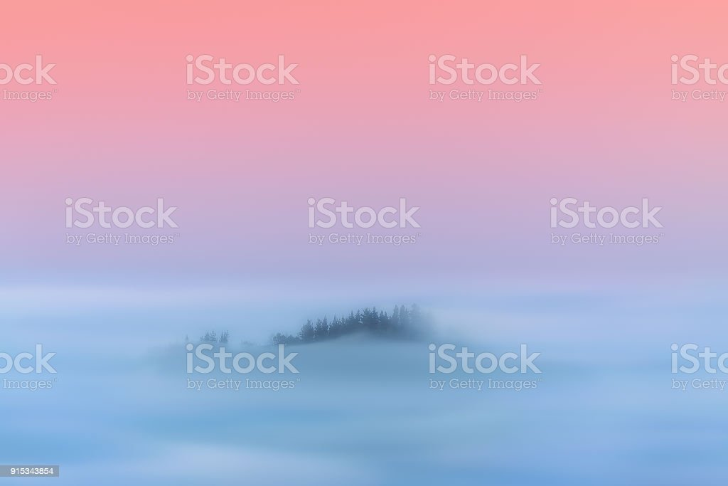 paisaje mágico de ensueño de bosque nebuloso - foto de stock