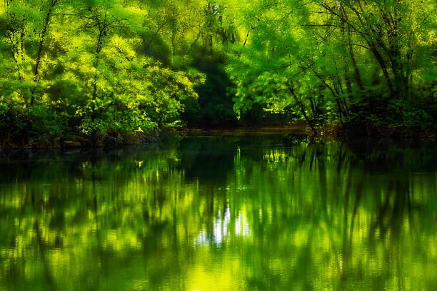 Dreamy River stock photo