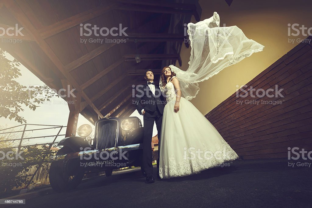 dreamy wedding couple royalty-free stock photo