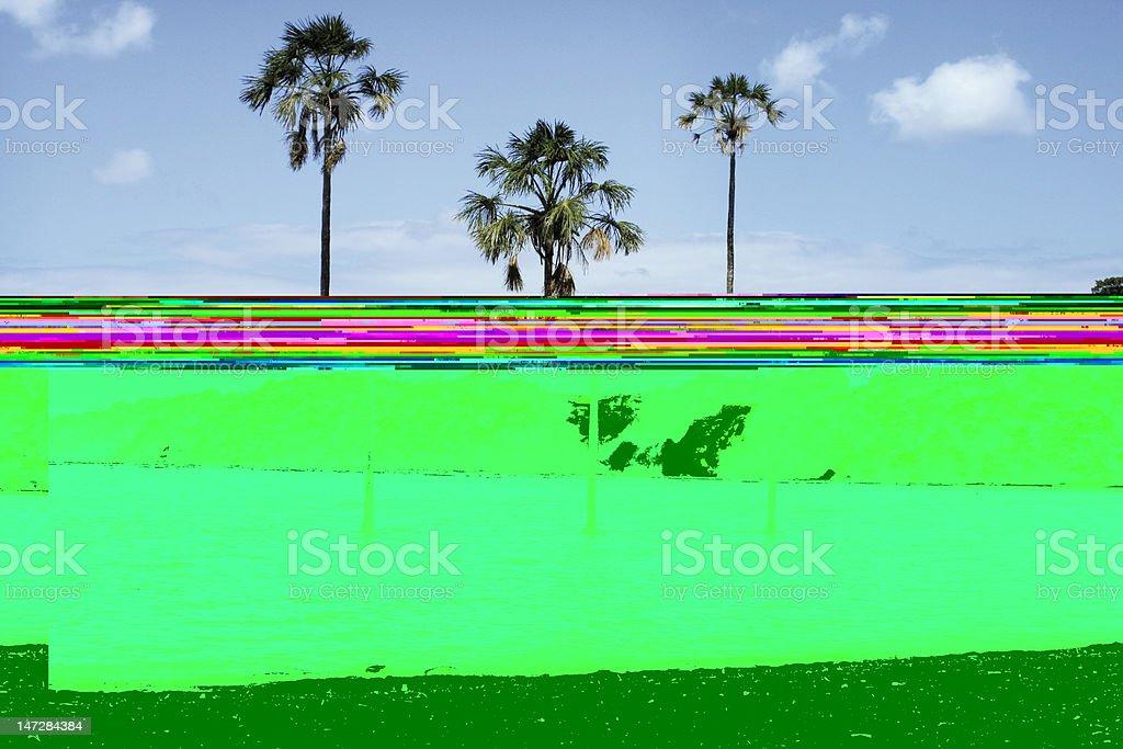 Drei Palmen in Canaima royalty-free stock photo