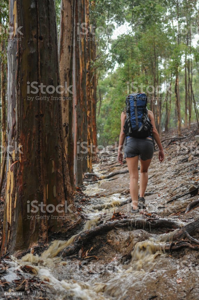 Drenched woman hiking stock photo
