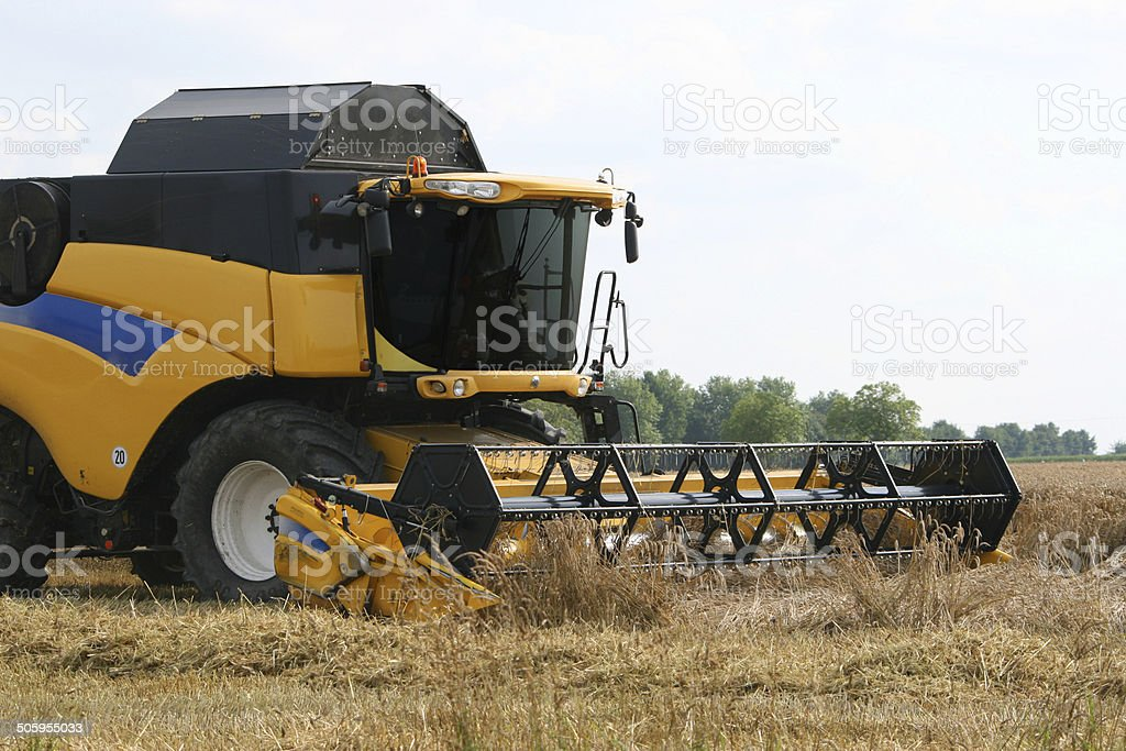 Drescher auf Weizenfeld – Foto