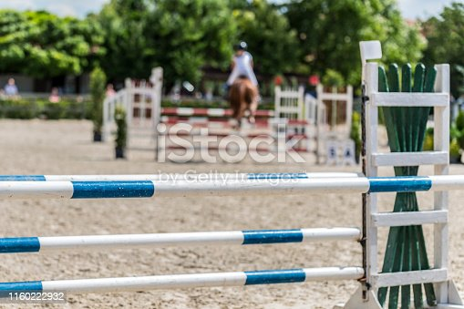 Adult, Adults Only, Agility, Animal, Animal Themes,horse