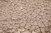 Dried and cracked lake ground