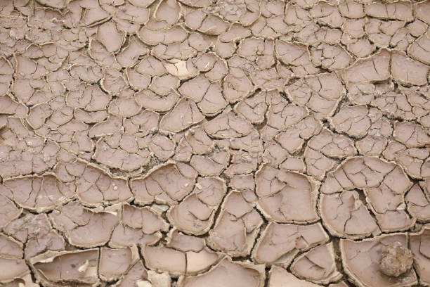Dried and cracked lake ground Dried and cracked lake ground lake bed stock pictures, royalty-free photos & images