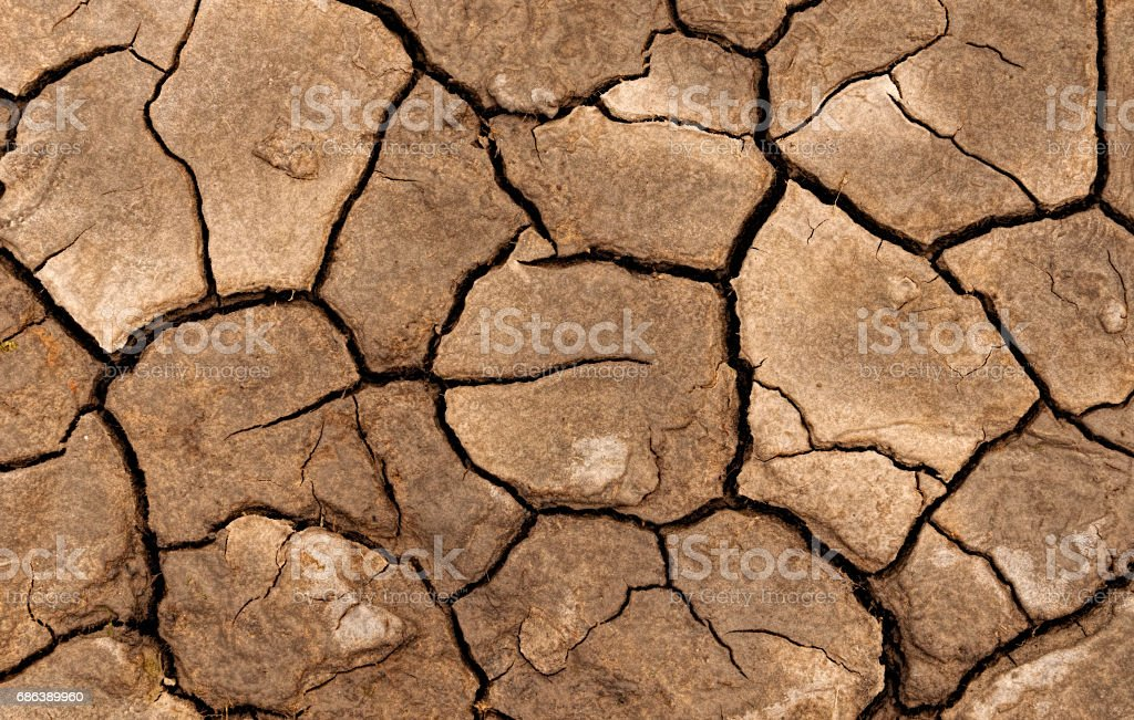 Dried and cracked mud pattern – Foto