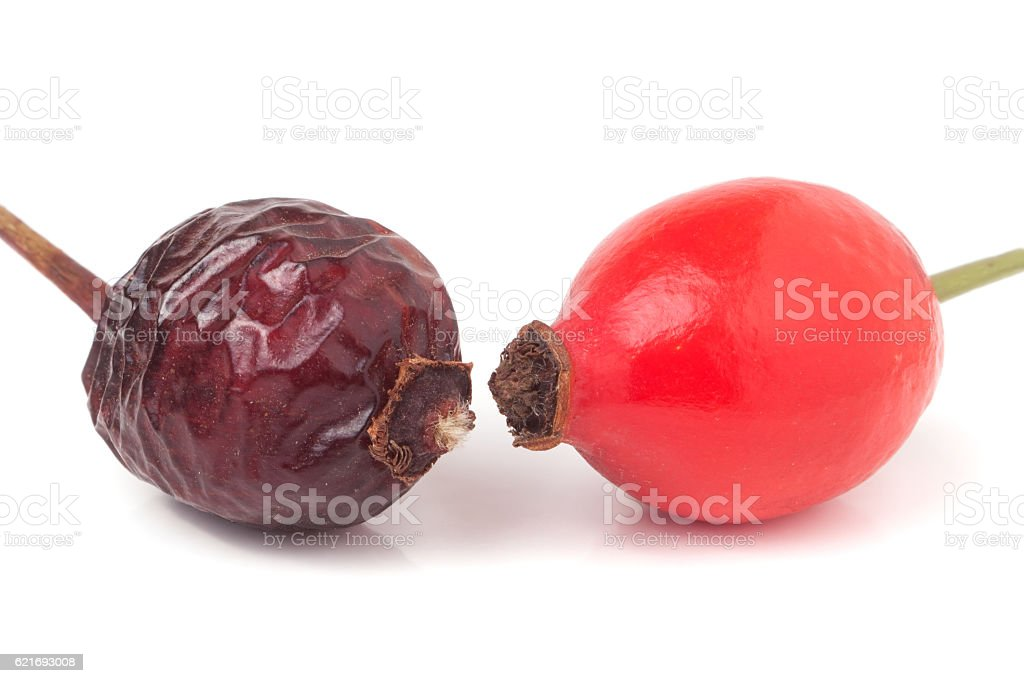dried and fresh rose hip berry isolated on white background stock photo