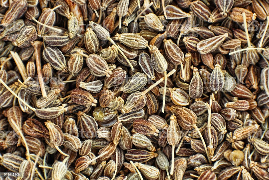 Dried anise seeds taken closeup as food background. – Foto