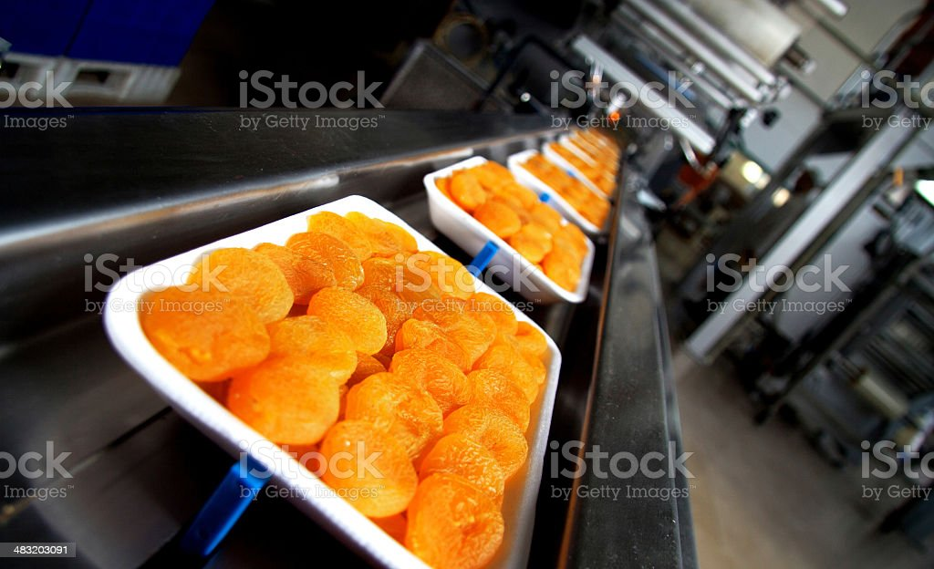 Dried Apricot Factory stock photo