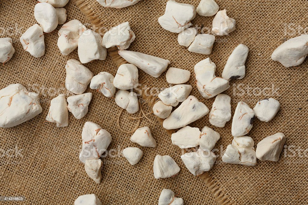 Dried Baobab fruit pulp stock photo