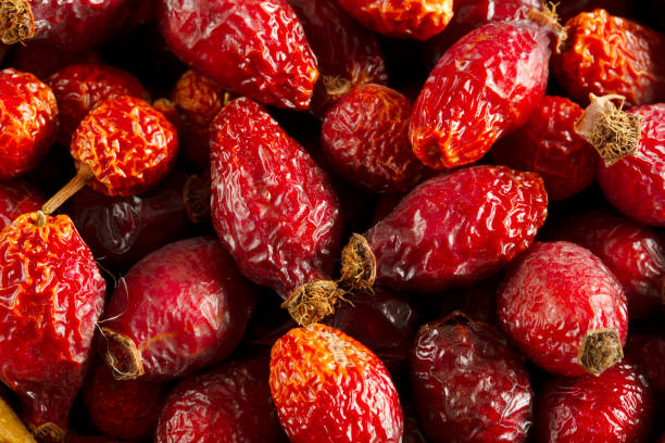 Dried berries of rose hips. Dried fruits. Dried berries of rose hips. Dried fruits. dog rose stock pictures, royalty-free photos & images