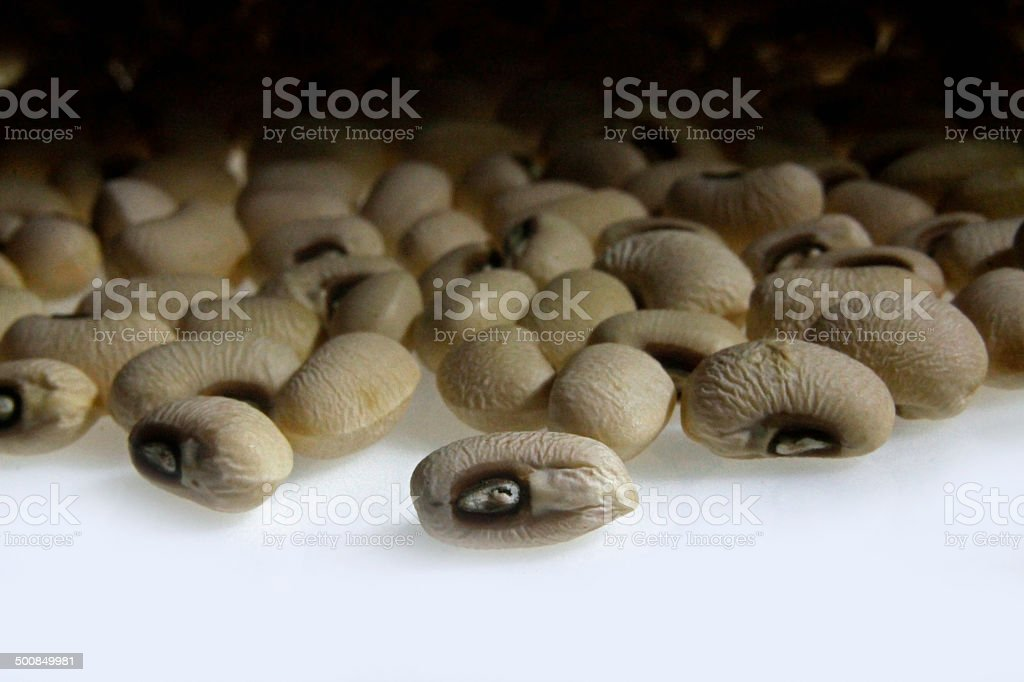 dried Black-Eyed Peas, Cowpea stock photo