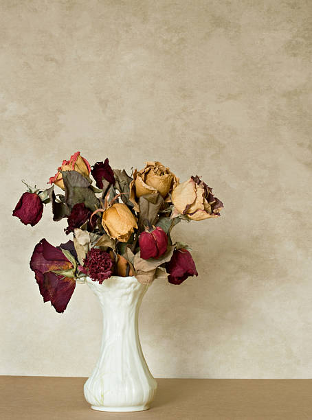 Dried Bouquet stock photo