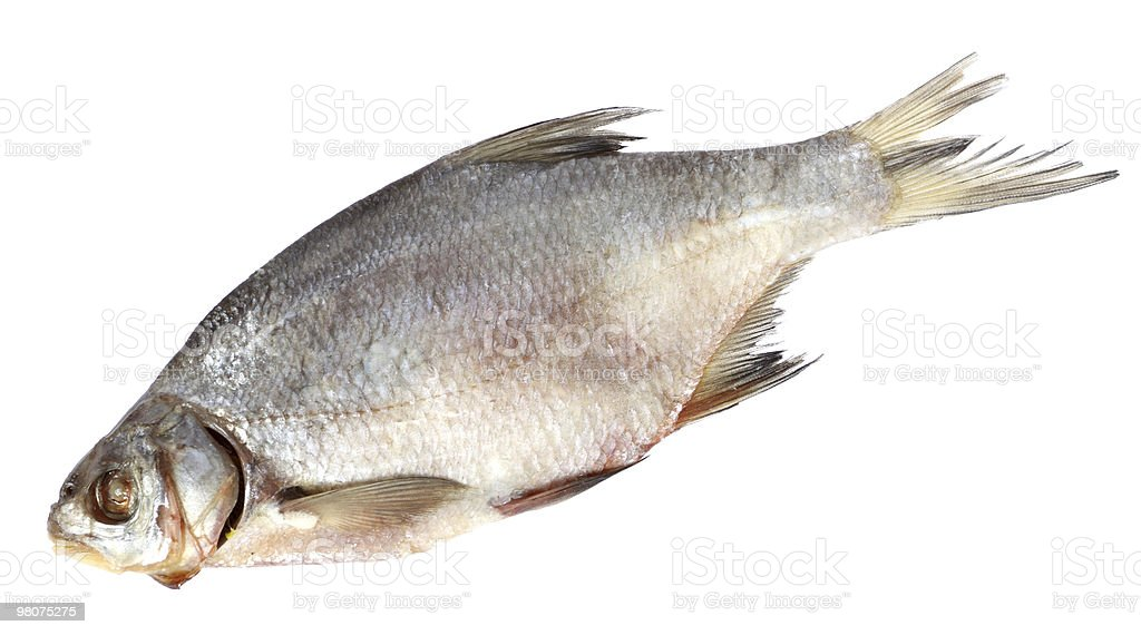 Dried bream fish isolated on white stock photo
