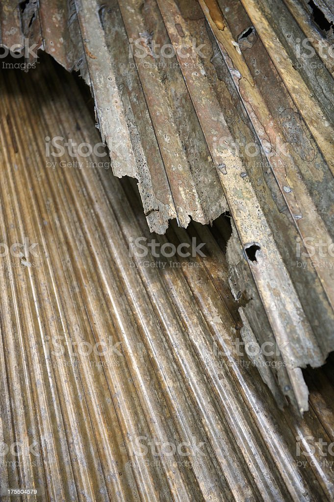 Dried Brown Textured Palm Leaf Vertical royalty-free stock photo