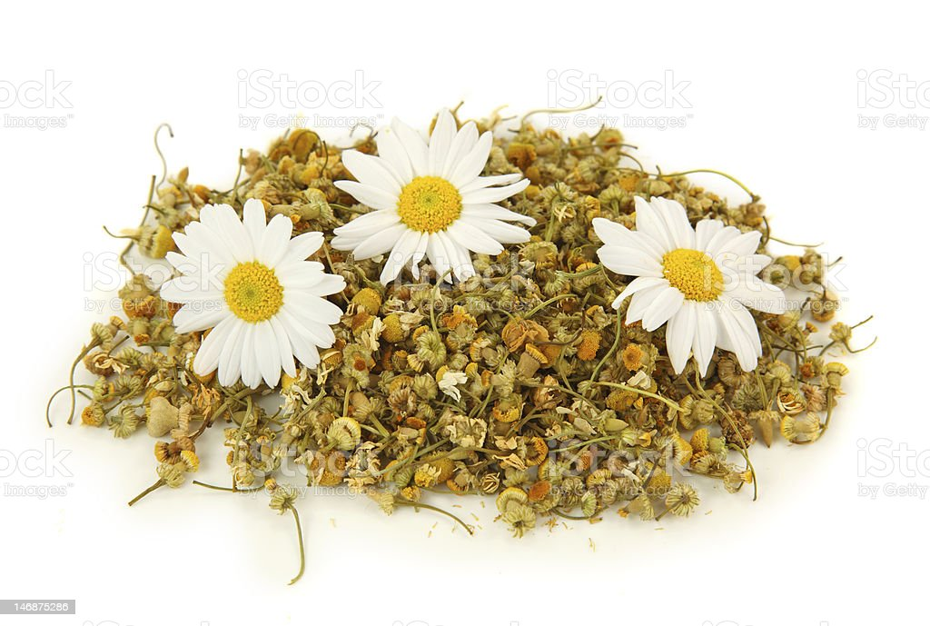 Dried camomile tea royalty-free stock photo