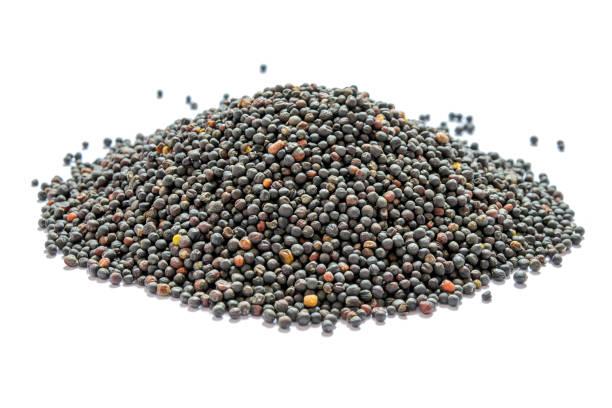dried canola seeds isolated on white. bunch of rape seeds on a white background. - kapustowate zdjęcia i obrazy z banku zdjęć