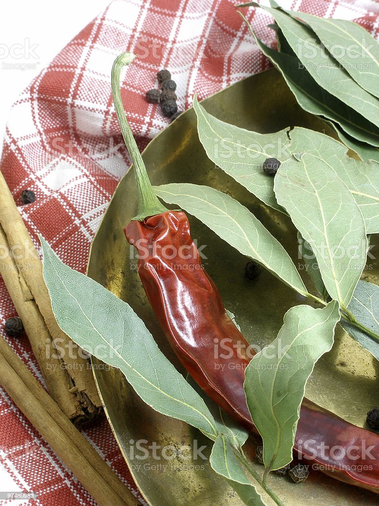 Dried chilli and bay leaves2 royalty-free stock photo