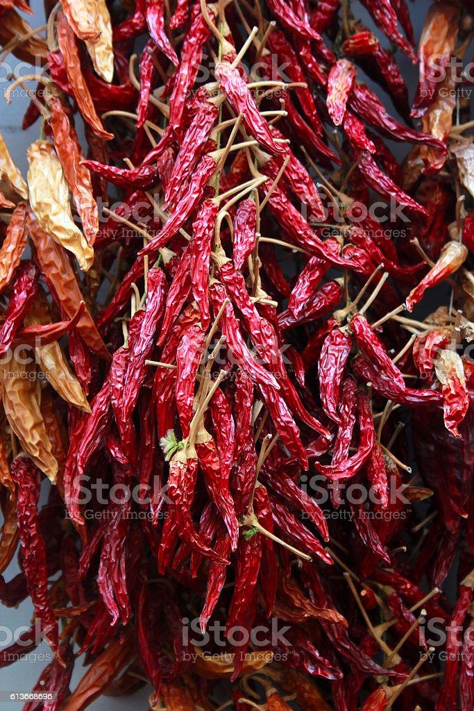 Dried chilli pepper stock photo
