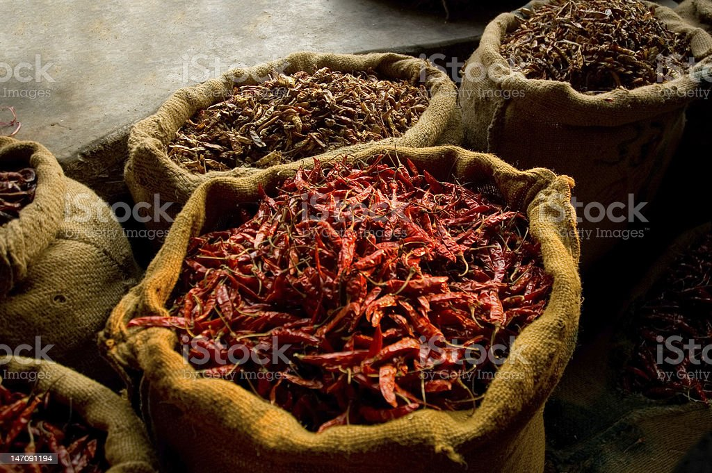 Dried chilli peppers in sacs royalty-free stock photo