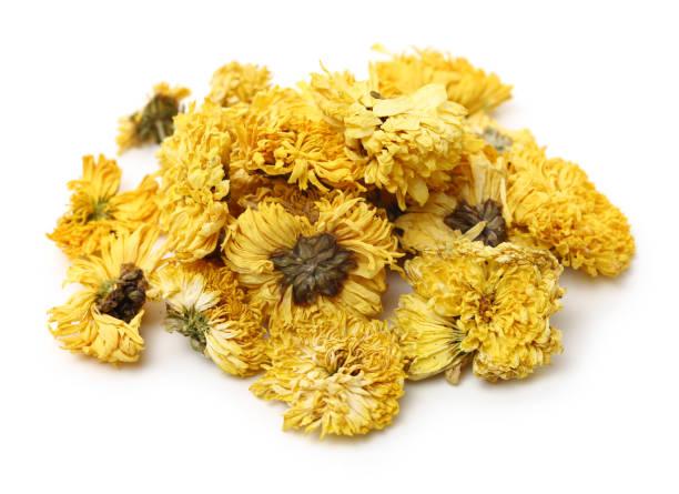Dried Chrysanthemum Flowers – zdjęcie
